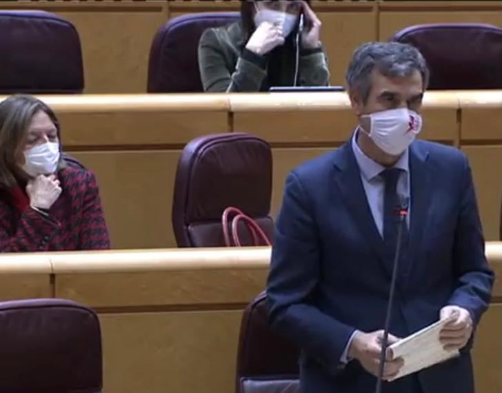 """Román en el Senado : """"Trabajen para controlar la pandemia y tener una Navidad segura, no solo para seguir en el poder"""""""