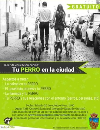 Todavía quedan plazas para los talleres de cultivo en macetas y adiestramiento canino en Guadalajara