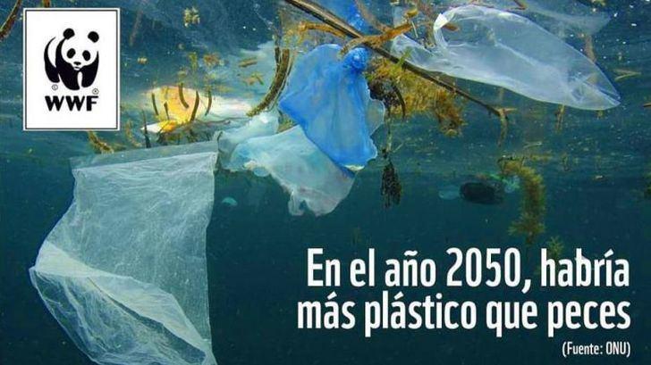 Producir plástico le cuesta al mundo más de 3 billones de euros al año