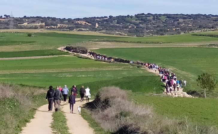 Alrededor de 300 personas disfrutan de la ruta senderista 'Del Telégrafo al Pinarejo' de Yebra