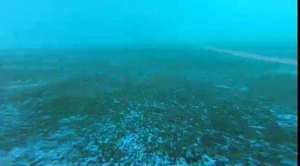 Denuncian que así está el fondo de la piscina olímpica de Azuqueca de Henares